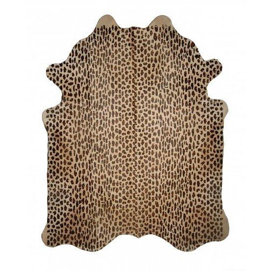 Wild Life - Leopard