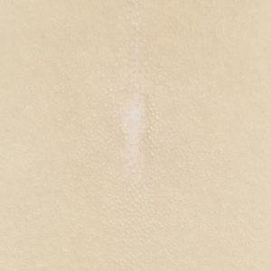 SHAGREEN STINGRAY - MOONSTONE