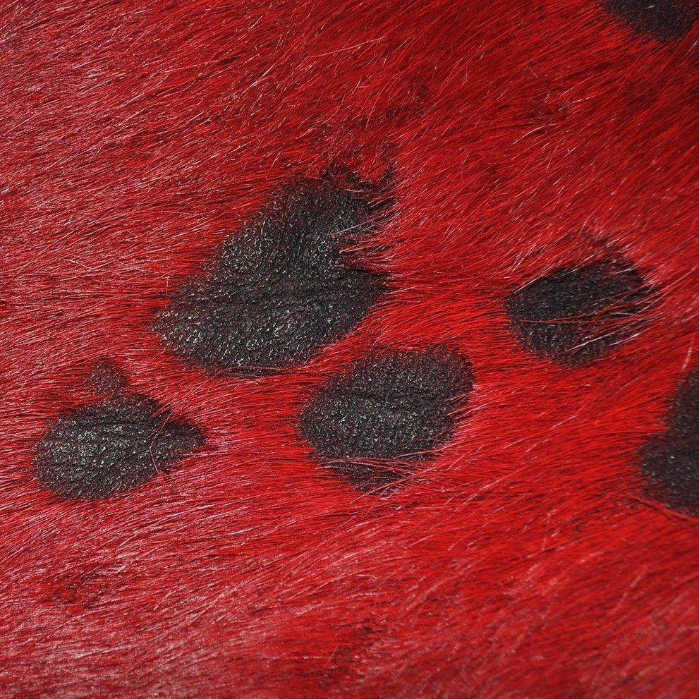COLOR SPLASH - FIRE RED & BLACK