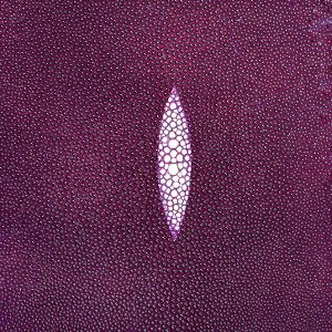 SHAGREEN STINGRAY - AMETHYST