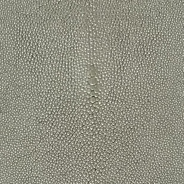 SHAGREEN STINGRAY - SPINEL
