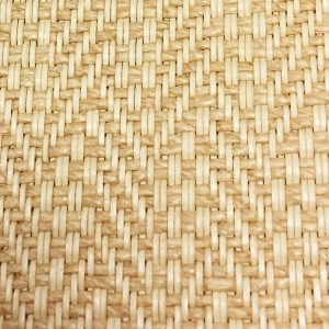 Woven Naturals - Cabo Palm
